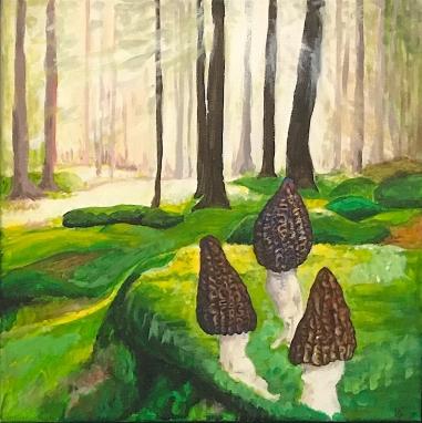 Wald mit Morcheln